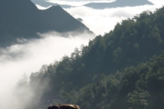 casa-martin-turismo-rural-asturias-muniellos-44