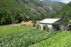 casa-martin-turismo-rural-asturias-muniellos-17