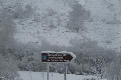 casa-martin-turismo-rural-asturias-muniellos-31