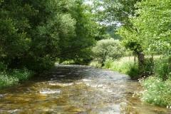 casa-martin-turismo-rural-asturias-muniellos-36