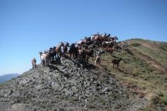 casa-martin-turismo-rural-asturias-muniellos-8