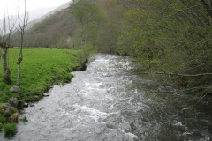 casa-martin-turismo-rural-asturias-muniellos-28