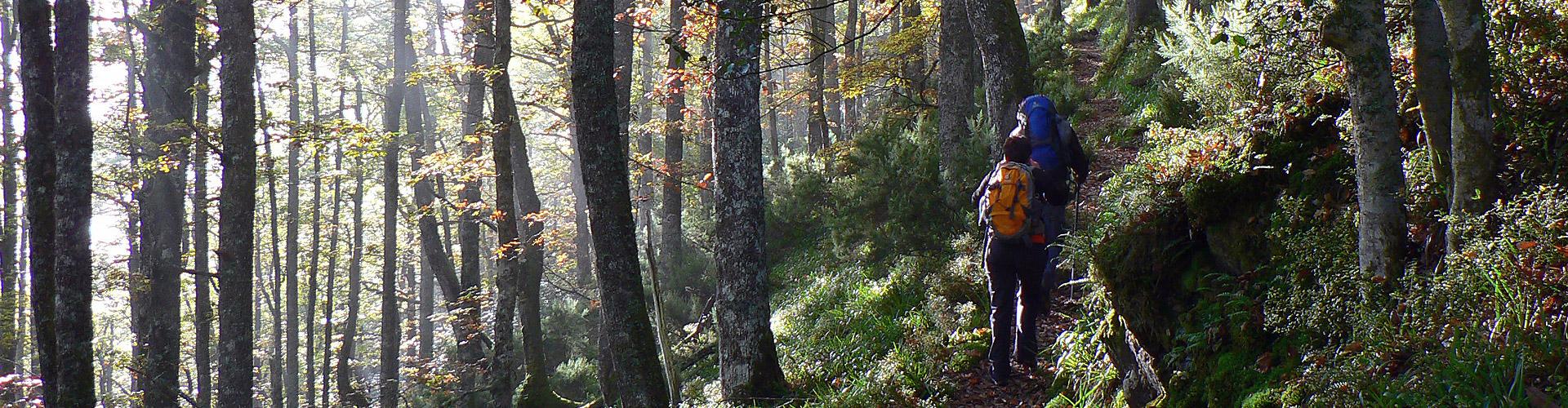 asturias-turismo-rural-rutas-senderismo